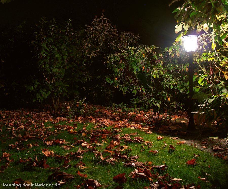garten_lampe_nachtaufnahme.jpg