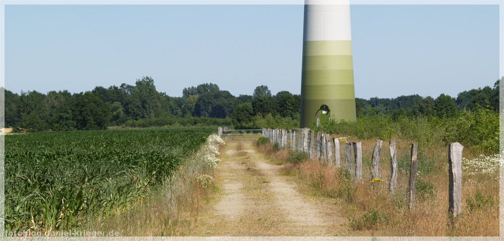 weg-windkraftanlage.jpg